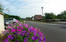 Réhabilitation de la rue des vergers - Ernolsheim les Saverne